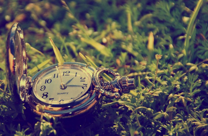 clock_series___nature_by_ritac4-d3apajv[1]